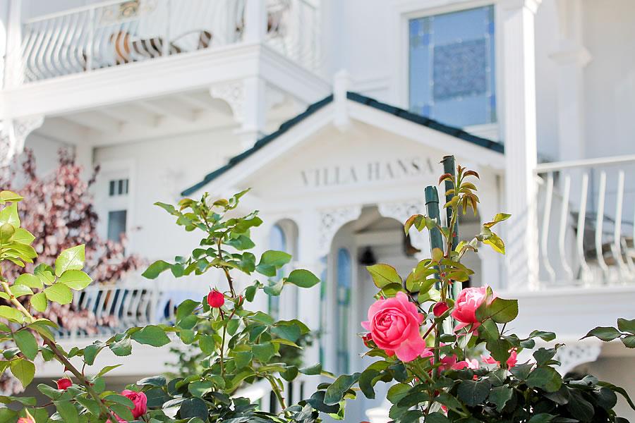 blühende Rosen vor dem Eingangsportal von Villa Hansa